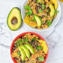 Quinoa Taco Salad [vegan, gf]