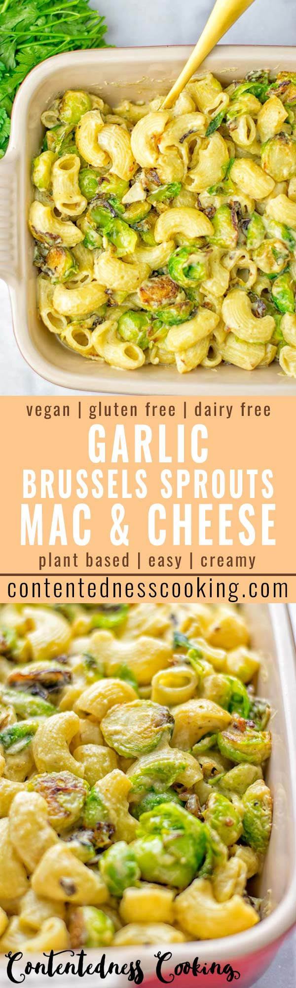 This Garlic Brussels Sprouts Mac and Cheese is entirely vegan, gluten free, and super easy to make. It's an amazing comfort food for dinner, lunch, meal prep, work lunches, date nights and of course the holidays. Everyone will get addicted to this from the first to the last bite, try it now! #vegan #glutenfree #dairyfree #vegetarian #mealprep #dinner #lunch #worklunchideas #holidays #macandcheese #contentednesscooking #pasta #thanksgiving