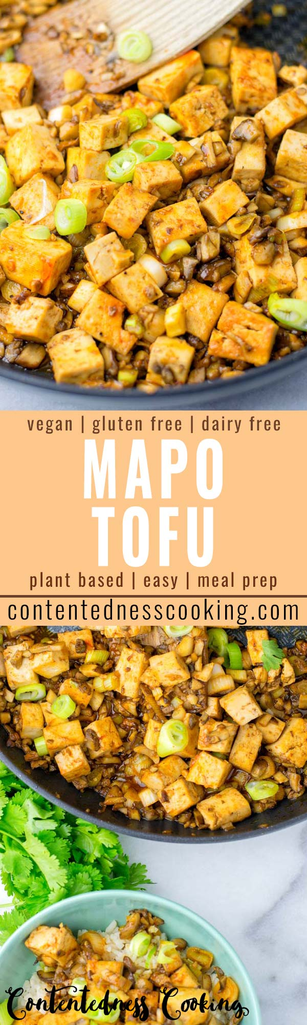 This Mapo Tofu is ready in under 15 minutes, versatile, flavor packed and protein rich. Serve plain or with rice and quinoa the ultimate Chinese comfort food made vegan plus gluten free, yum! #vegan #dairyfree #glutenfree #vegetarian #onepotmeals #contentednesscooking #15minutemeals #dinner #lunch #mealprep #budgetmeals #comfortfood #mapotofu