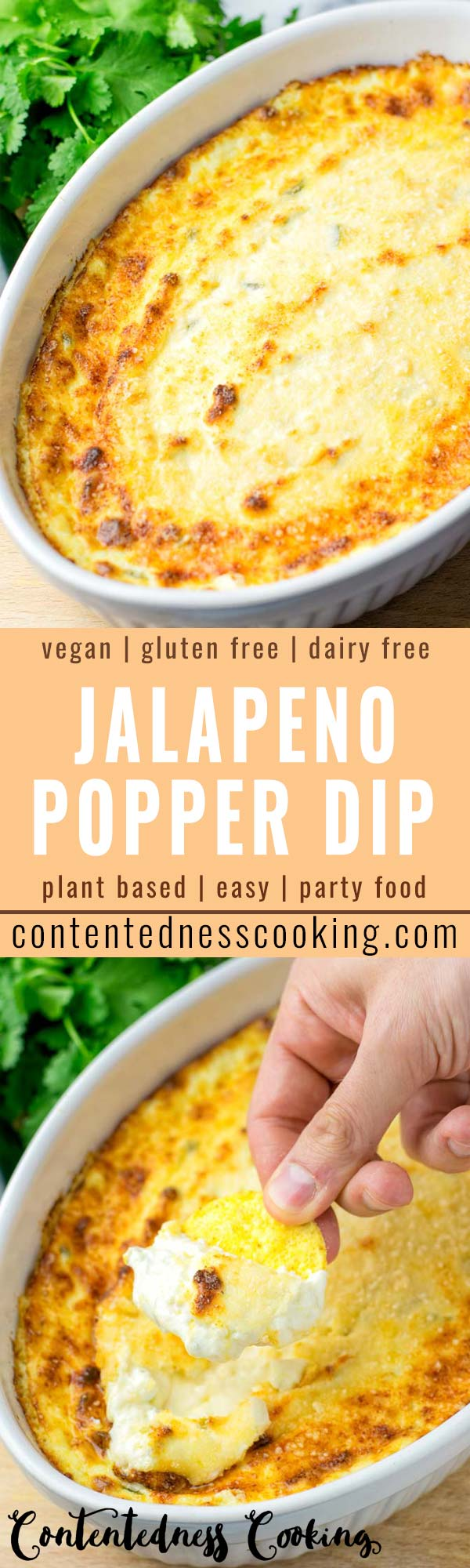 This Jalapeno Popper Dip is easy to make and delish hot or cold. If you are looking for a not only vegetarian but also vegan jalapeno dip recipe, this is the best one for you. It is super satisfying packed with flavors, great for parties, dinner, lunch, meal prep.